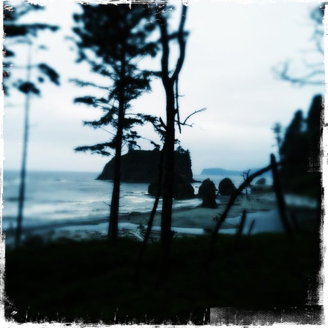 At Ruby Beach on the Pacific Coast.