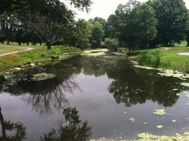 Scarboro-Pond-from-bridge