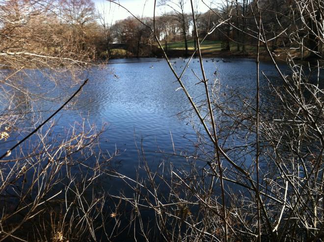 Scarboro-Pond